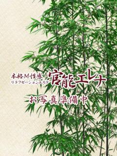 紺野 官能エレナ(本格M性感リラクゼーションエステ)