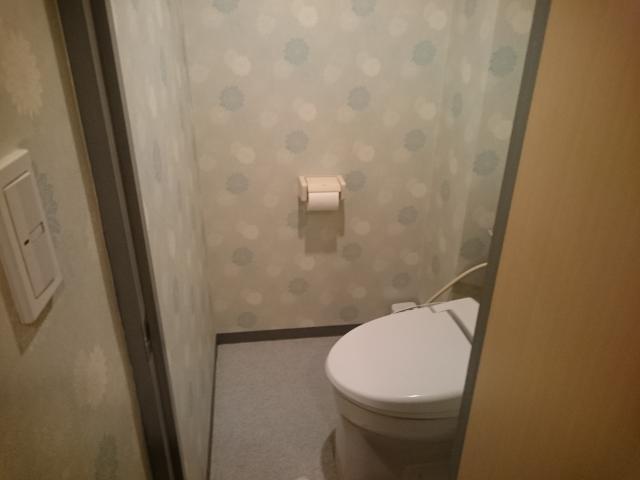 ホテルマーブル(品川区/ラブホテル)の写真『#505 トイレ。入り口が狭く感じる』by 退会したユーザー(ID:7972)
