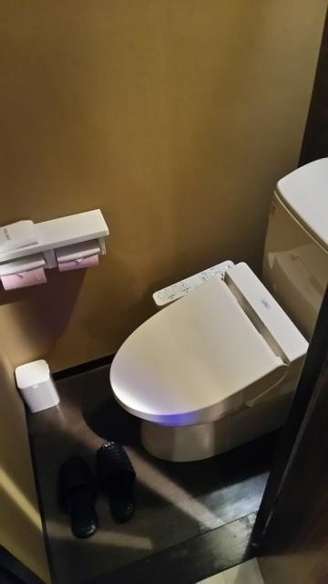 リオス五反田(品川区/ラブホテル)の写真『501号室トイレ』by ミド丸