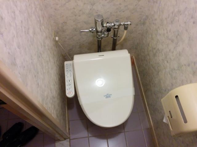 PRINCESS2世(台東区/ラブホテル)の写真『201号室のトイレ』by 退会したユーザー(ID:10185)