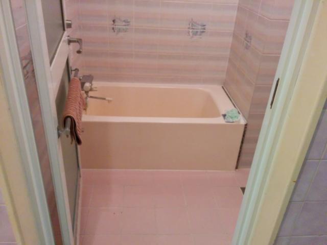 PRINCESS2世(台東区/ラブホテル)の写真『201号室の浴室』by 退会したユーザー(ID:10185)