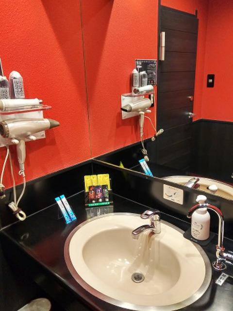 HOTEL  YaYaYa2番館(台東区/ラブホテル)の写真『201号室 洗面台』by シンカー