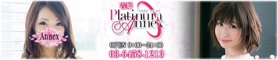Platinum Annex(プラチナアネックス)(吉原/ソープランド)