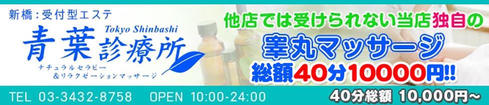 青葉診療所(新橋/性感エステ)