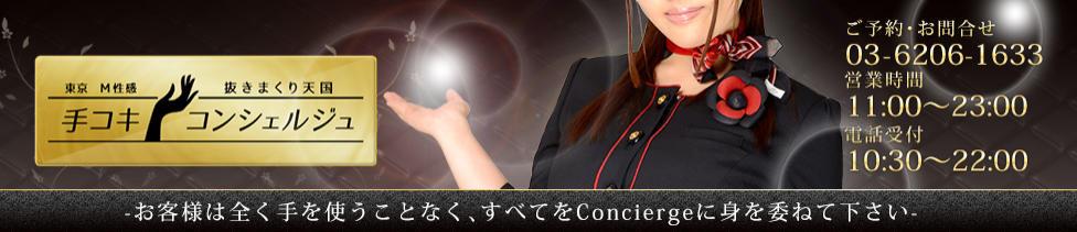 手コキConcierge(コンシェルジュ)(新橋発・近郊/派遣型手コキ店)