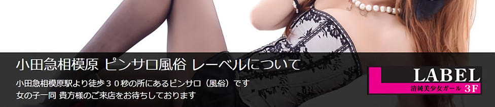 LABEL(レーベル)(小田急相模原/ピンサロ)
