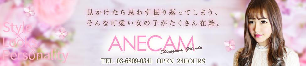 ANECAM(五反田発・23区/デリヘル)