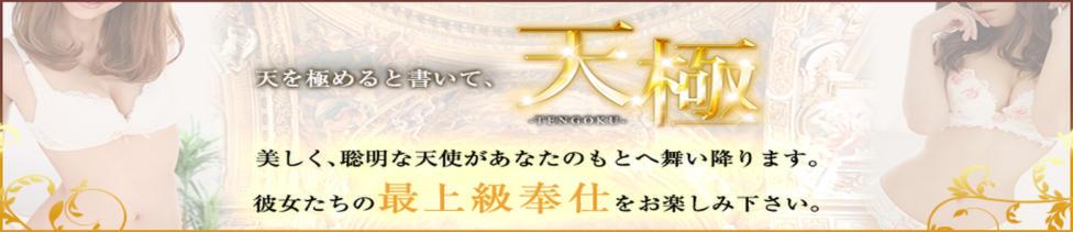 天極(横浜みなとみらい発・近郊/高級デリヘル)