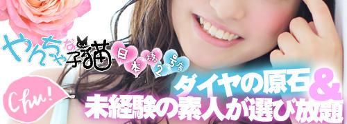 やんちゃな子猫 日本橋2号店(日本橋/デリヘル)