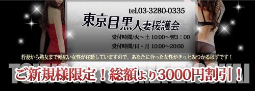 東京目黒人妻援護会(五反田/デリヘル)