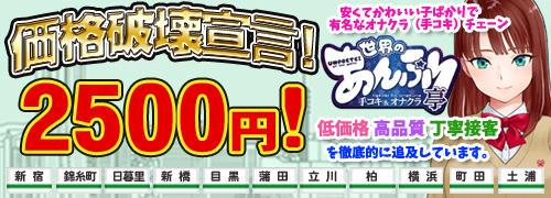 世界のあんぷり亭 立川店(立川/デリヘル)