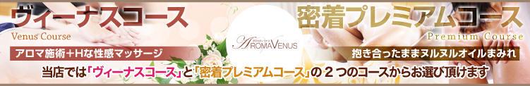 選べる2つのコース アロマヴィーナス所沢(所沢/デリヘル)