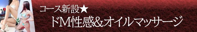 【ドM性感&オイルマッサージ】コース 人妻千人斬り立川店(立川/デリヘル)