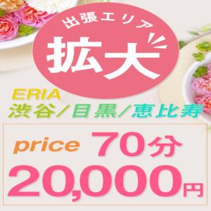☆出張エリア拡大☆ 東京美少女コレクション(五反田/デリヘル)