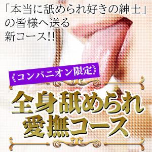 全身舐められ愛撫コース 乳首愛撫専門店「五反田シルキータッチ」(五反田/デリヘル)