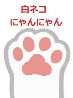 深田 PukuPuku白ネコにゃんにゃん(ぽっちゃり専門デリヘル)