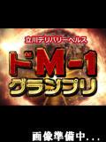 しおん ドM1グランプリ(立川/デリヘル)