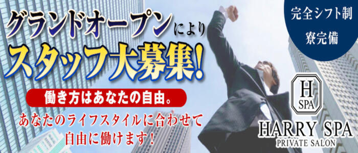 HARRY SPA(ハリースパ)(高収入バイト)(梅田/【非風俗】メンズエステ)