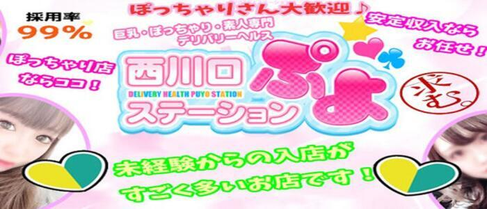 西川口ぷよステーション(高収入バイト)(西川口発・近郊/ぽちゃ娘・巨乳専門デリヘル)