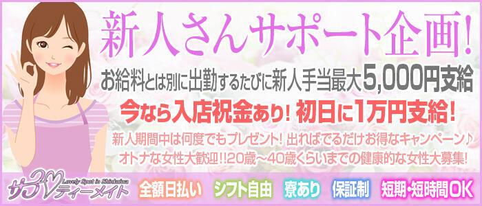 サーティーメイト(高収入バイト)(新小岩/ピンサロ)