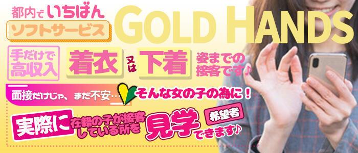 ゴールドハンズ(高収入バイト)(新橋/手コキ)