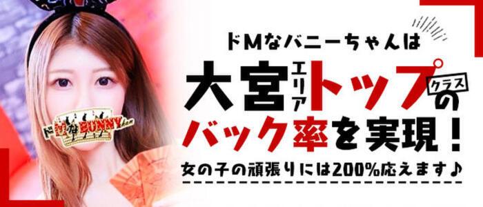 ドMなバニーちゃん大宮店(高収入バイト)(大宮/ソープランド)