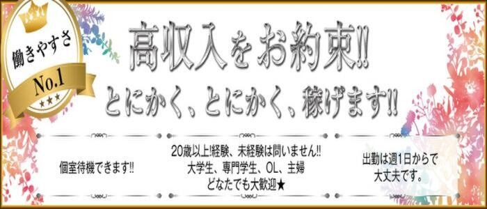 プレイガール(亀有)(高収入バイト)(亀有/ソープランド)