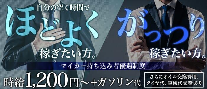 ピュアセレクション(高収入バイト)(錦糸町発・23区/デリヘル)