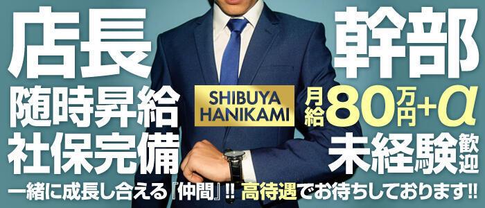 ハニカミ(高収入バイト)(渋谷/ピンサロ)
