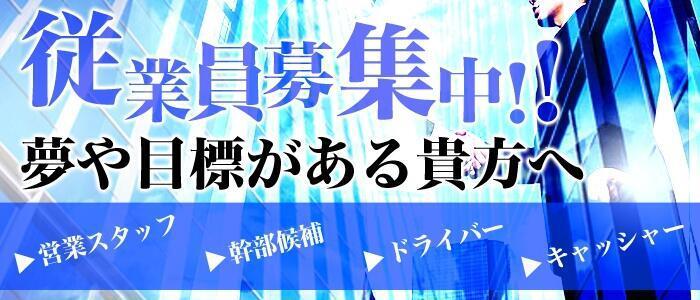 厳選美女デリバリー・オペラ(高収入バイト)(池袋/大塚/新宿発〜23区全域/デリヘル)