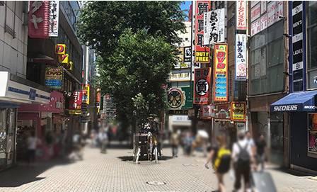 |新宿本店 ぽちゃカワ女子専門店(ぽっちゃり専門ホテヘル&デリヘル/新宿歌舞伎町発・近郊)