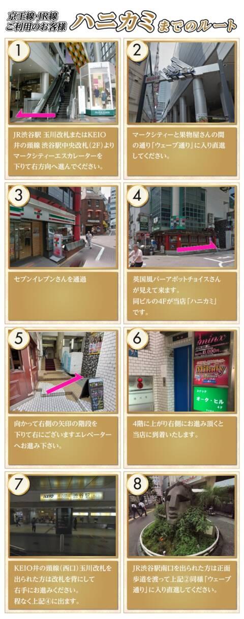 アクセス|ハニカミ(ピンサロ/渋谷)
