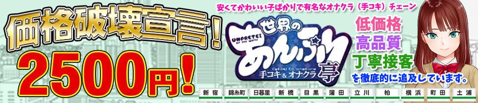 世界のあんぷり亭 目黒店(目黒周辺/激安オナクラ)