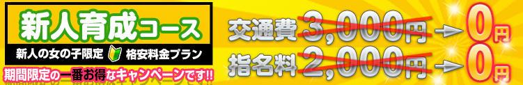「指名料完全無料」新人育成コース!リアルな「素人」をお楽しみ頂けます 白いぽっちゃりさん五反田店(五反田/デリヘル)