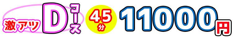オールヌード付き!激アツDコース! てこきのじかん(新宿・歌舞伎町/デリヘル)