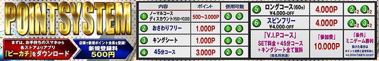 ★ POINT SYSTEM ★ ハニープリンセス(目黒/ピンサロ)
