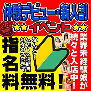 体験デビュー・新人割!