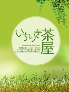体験入店② 一力茶屋(吉原/ソープ)