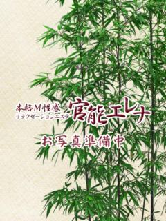 石井 官能エレナ荻窪店